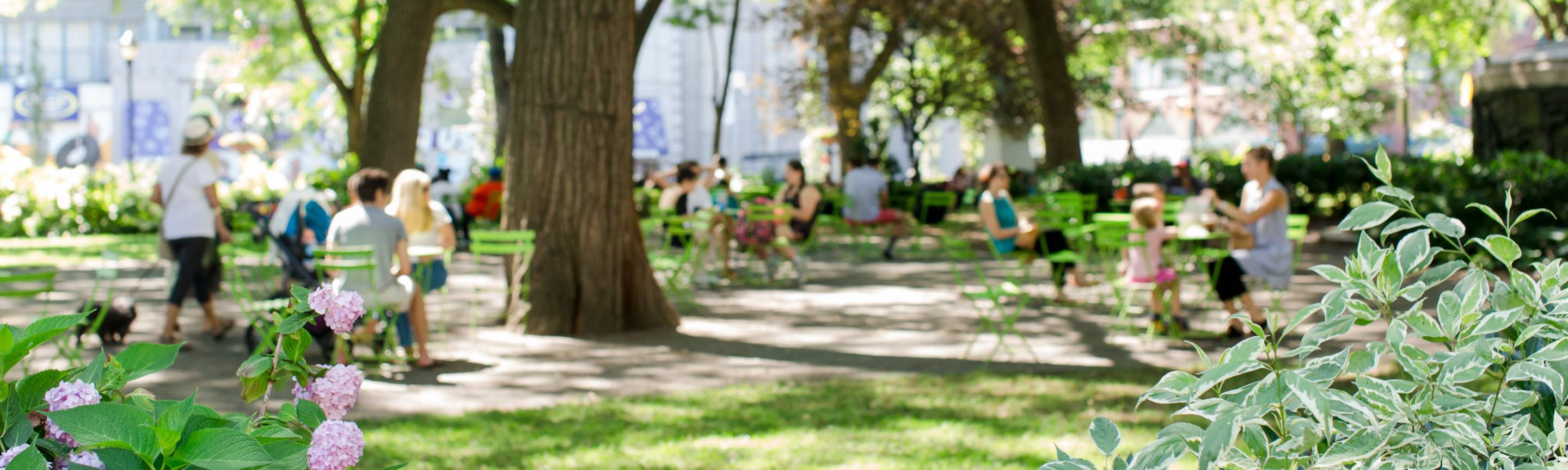 Banner Photo: Parks & Public Spaces